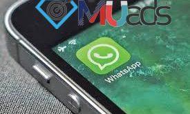 ساده ترین روش افزایش ممبر واتساپ